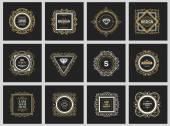 Monogram  luxury logo  template — Stock Vector