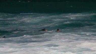 1080p, Bodyboarding on Hawaiis Beaches — Stock Video