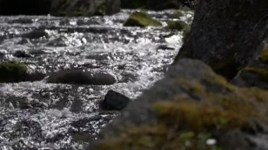 Stream course and rippling water, rivers, streams — Stock Video