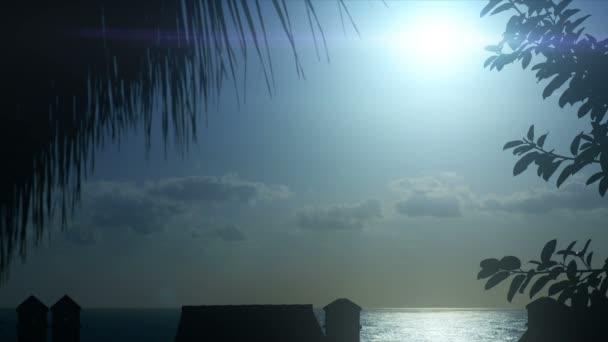 1080p, hermoso sol de la mañana con palm(s) en frente — Vídeo de stock