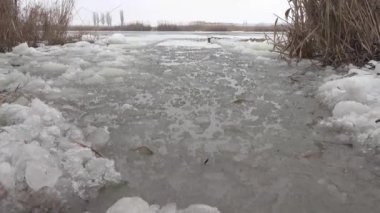Unfrozen, melted spot on the icy surface of the river with reeds — Vídeo de stock