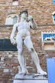 David of Michelangelo - Florence — Stock Photo