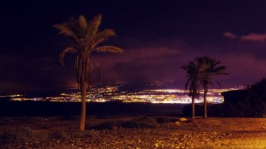Romantic night time lapse 4k video of palm trees in front of beach of Playa de las Americas in Tenerife island, Spain — Stock Video