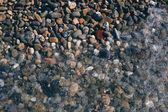 Stones on the seashore. Background — ストック写真