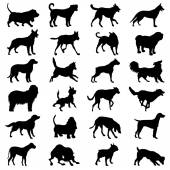 Dog collection - icon great for any use. Vector EPS10. — Stock Vector