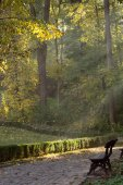 The sun's rays  in autumn park — Stock Photo