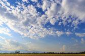 Cloud sky over rice field — Stockfoto
