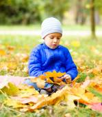 Portrait of a little boy in autumn park — Stock Photo