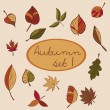 Set of autumn leaves — Stock Vector #52776671