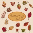Set of autumn leaves — Stock Vector #52776673