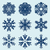 Snowflakes icon. Winter theme. — Cтоковый вектор