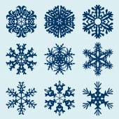 Snowflakes icon. Winter theme. — Vector de stock