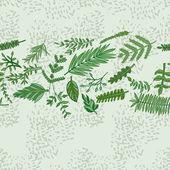 Herbal border pattern. — Stock Vector
