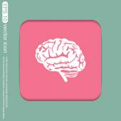 Brain. Mind and science icon — Stock vektor