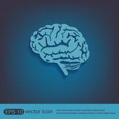 Brain Mind icon — Stock Vector