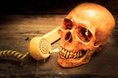 Skull with cigarette, still life. — Stock Photo