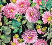 Pink Dahlias floral seamless pattern — Stock Photo