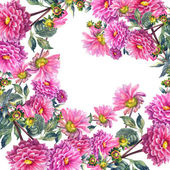 Beautiful Pink Dahlias Flowers — Stock Photo