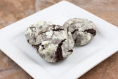 Chocolate Crackle Cookies — Stock Photo