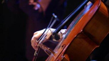 Musicien jouant du violoncelle lors d'un concert. — Vidéo