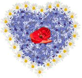 Heart made of flowers. Valentine day — Stock Photo