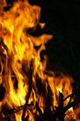 Fire on the dark background — Stock Photo