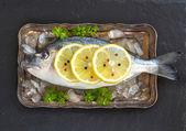 Pesce fresco di dorado — Foto Stock