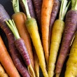 Fresh organic rainbow carrots — Stock Photo #68983865