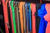 Collection of Colorful  Belts on Rack — Stock Photo