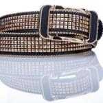 Black women style belt with metal rivets — Stock Photo #66923919