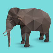 Elephant Polygon vector infographic — Stock Vector