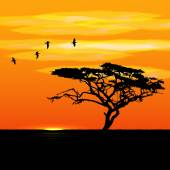 Sunset tree and birds silhouettes — Stock Vector