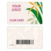 Juego de vector coloridas tarjetas — Vector de stock