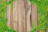 Grey wooden plank background and texture — Stock Photo