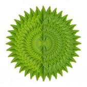 Résumé de feuille verte — Photo