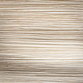 Close up texture of dried palm leaf — Stock Photo