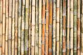 Bamboo texture and background — Stock Photo
