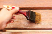 Hand holding brush and paint timber — Stockfoto