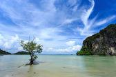 Railay beach, Krabi, Andaman sea Thailand — Stock Photo