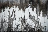 Old cement wall get black mold — ストック写真