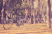 Vintage bicycle in Sukhothai Historical Park — Stock Photo