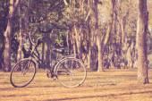 Vintage vélo dans le parc historique de Sukhothai — Photo