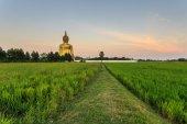 Big golden buddha statue — Stock Photo