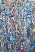 Garrafas de plástico trituradas — Fotografia Stock
