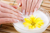 Close up of female hands having a manicure and spa treatment — Stock Photo