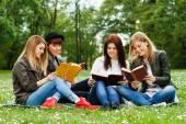 女孩坐在公园里和学习 — 图库照片