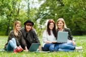Vier jonge meisjes zitten in het park en met behulp van laptops — Stockfoto