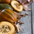 Decorative pumpkins background — Stock Photo #54708765
