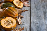 Decorative pumpkins background — Stock Photo