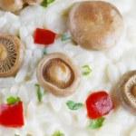 Saffron Milk Cap mushroom rice background — Stock Photo #74268513